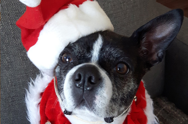 Maggy Thanks You for your Giving Tree Donations!